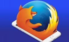 CVE-2019-17016 Firefox浏览器漏洞:使用单个注入点提取CSS数据