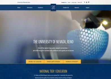 公司网站设计成哪种页面风格更受客户欢迎